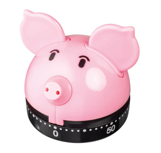 Judge Novelty Timer Piggy